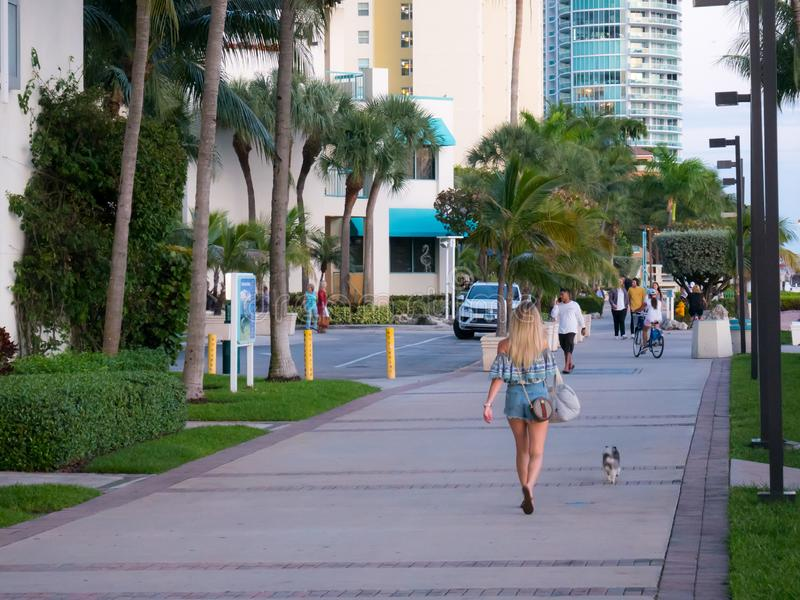 Miami beach, Florida, USA. August 2019. Beautiful woman is walking with dog in the boardalk of South Beach.  royalty free stock image