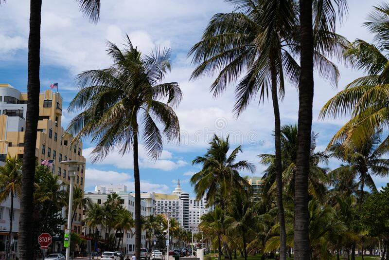 Miami beach. Ocean Drive in South Beach. Coronavirus pandemic time. American city. USA urban lifestyle. Traffic in the. City with palm trees. Florida Sunshine stock photo