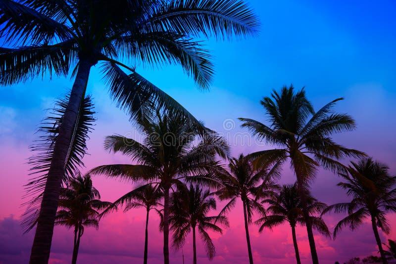 Miami Beach South Beach sunset palm trees Florida. Miami Beach South Beach sunset palm trees in Ocean Drive Florida stock photo