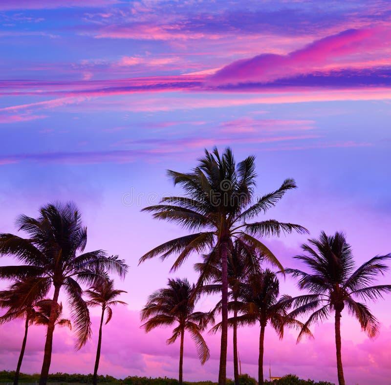 Miami Beach South Beach sunset palm trees Florida. Miami Beach South Beach sunset palm trees in Ocean Drive Florida stock image