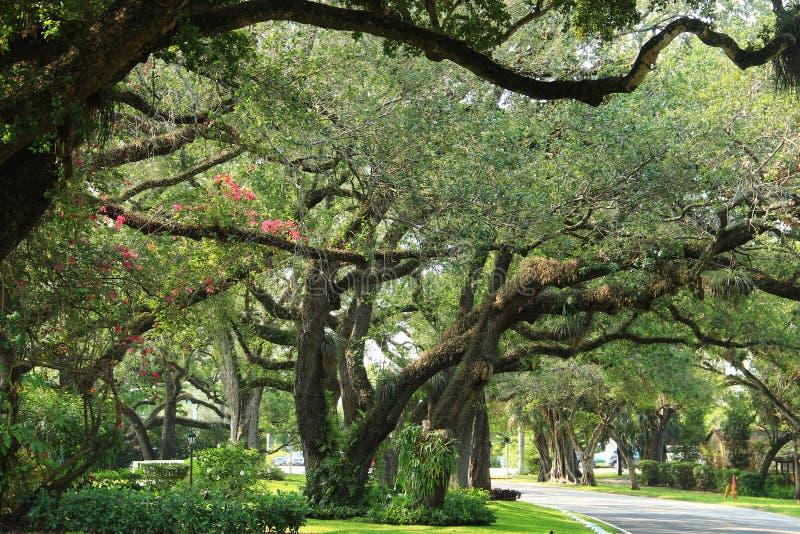 Miami - Coral Gables royalty-vrije stock foto