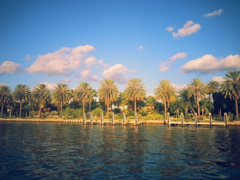 Miami fjärd royaltyfri fotografi