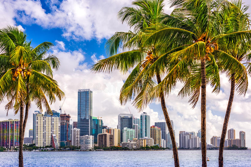 Miami, Florida, USA. Tropical downtown skyline stock photos