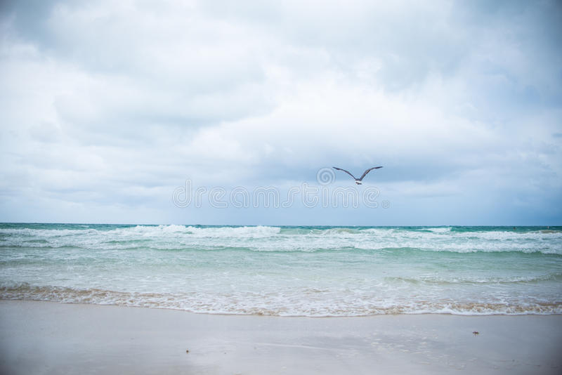 Miami South Beach Landscape stock photo