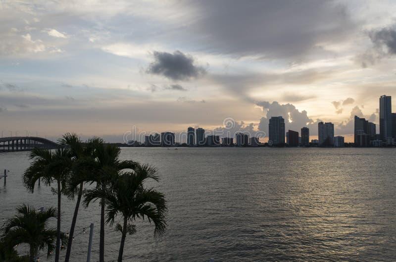 Miami-Stadtbild lizenzfreies stockfoto