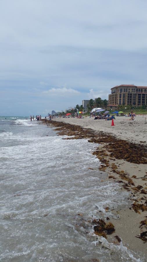 Miami-Ufer lizenzfreies stockbild