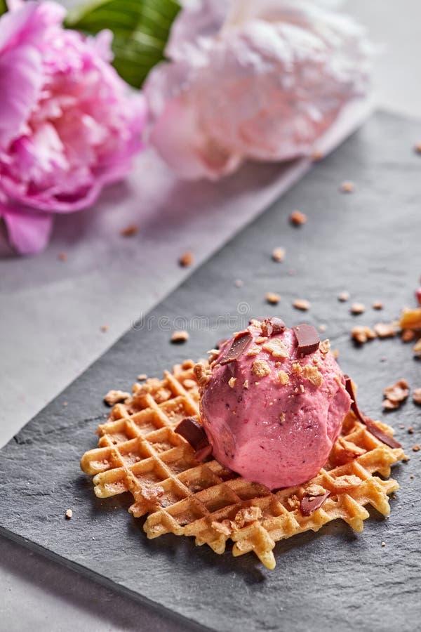 Miarka jagodowy lody na opłatku z czekoladowymi układami scalonymi na krytykuje talerza na szarość betonu stole przeciw a obraz royalty free