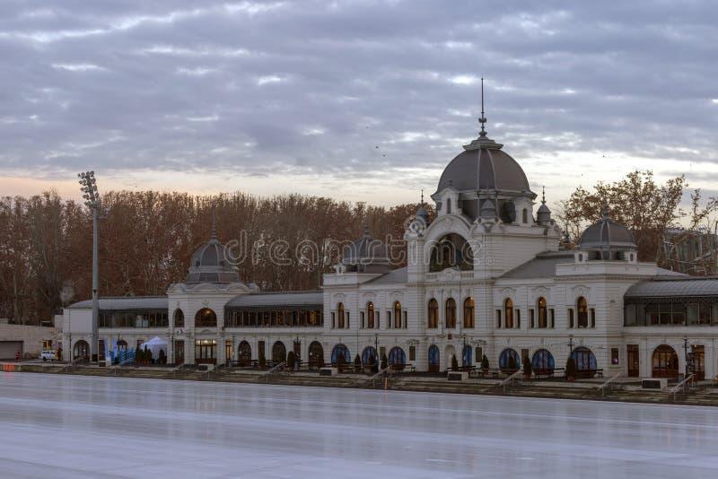 Miasta Parkowy Lodowy lodowisko zdjęcie stock