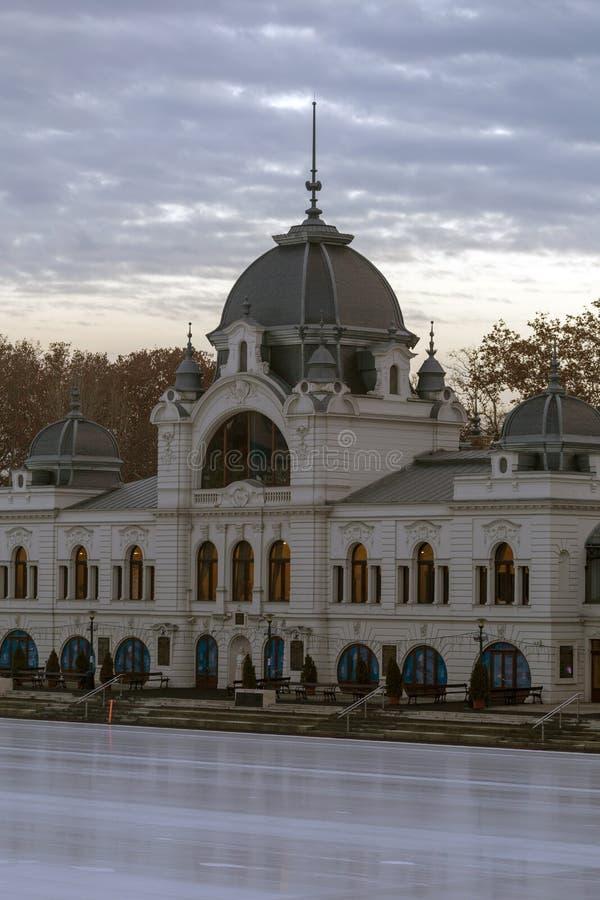 Miasta Parkowy Lodowy lodowisko obrazy royalty free