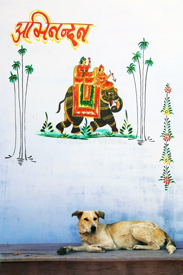 miasta pushkar święty zdjęcie royalty free