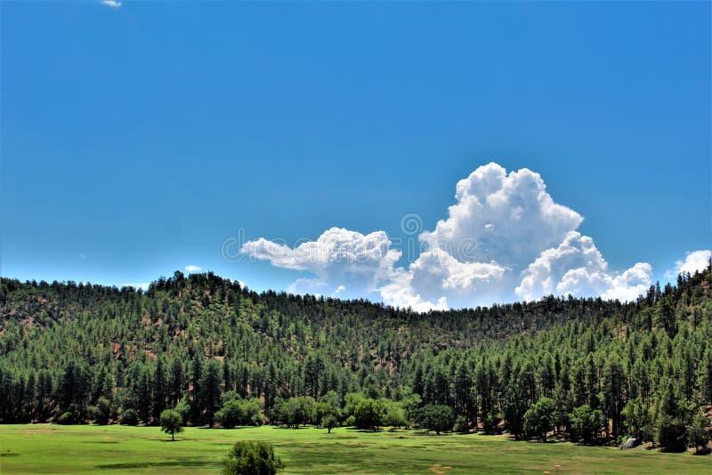 Miasteczko Gwiazdowa dolina, Gila okręg administracyjny, Arizona, Stany Zjednoczone, Tonto las państwowy obrazy royalty free