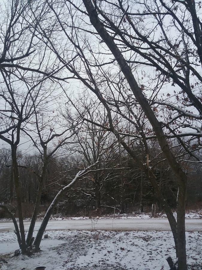 miasto blisko kolejowych drogowych połysk snow słońce zima drewno obraz royalty free