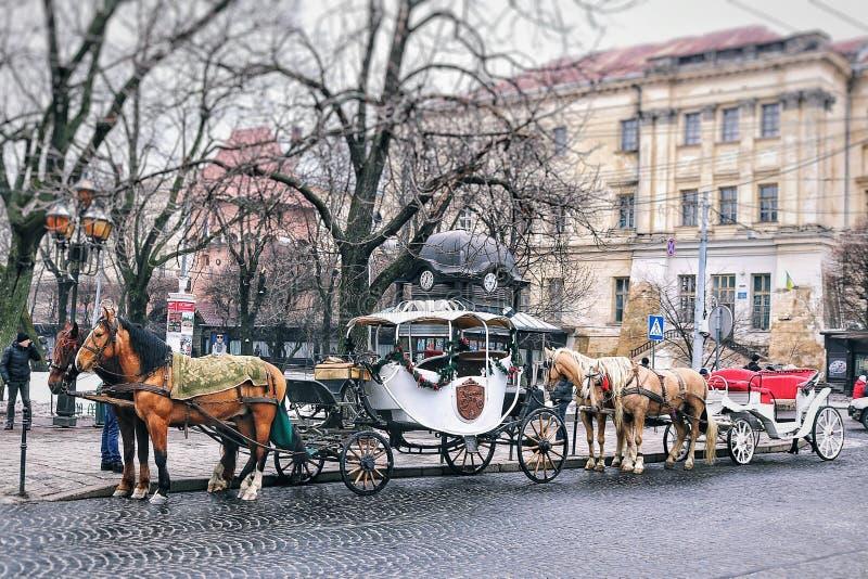 Miasto fracht i koń