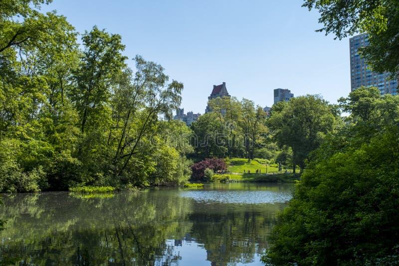 Miasto jak widzieć od parka, Nowy Jork fotografia stock