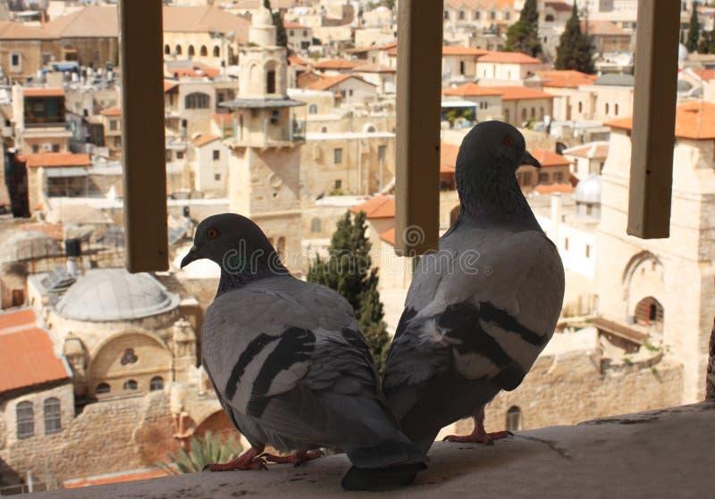 Download Miasto Jerusalem stary obraz stock. Obraz złożonej z klejnot - 13338645