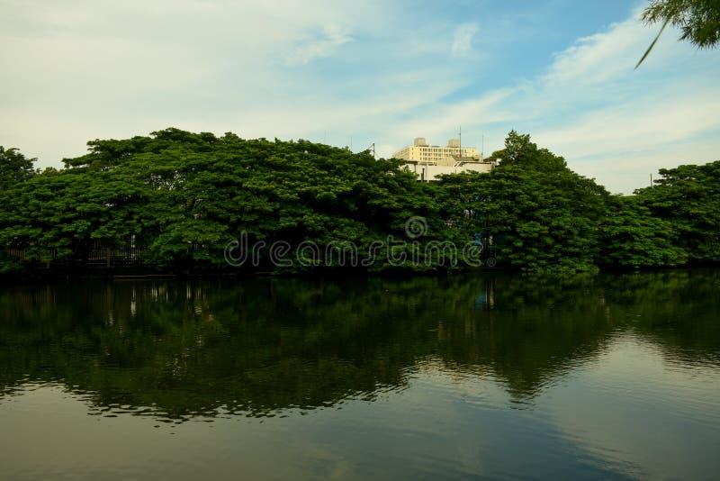 Miasto jeziora obraz royalty free