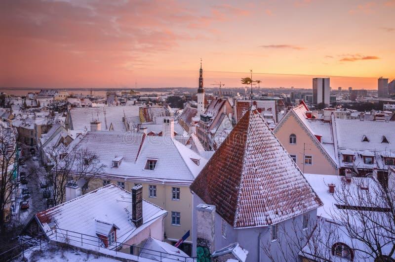 Miasto krajobraz z śnieżystymi kafelkowymi dachami obraz royalty free