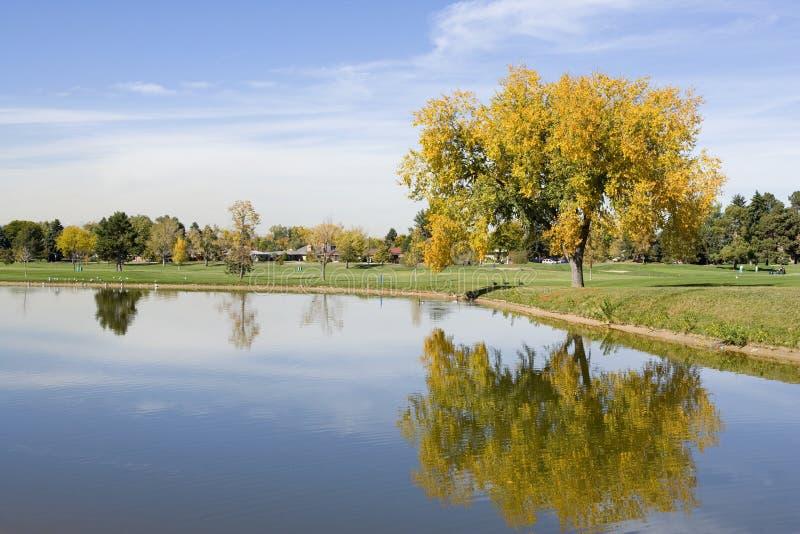 miasto kursu golfa park obraz royalty free