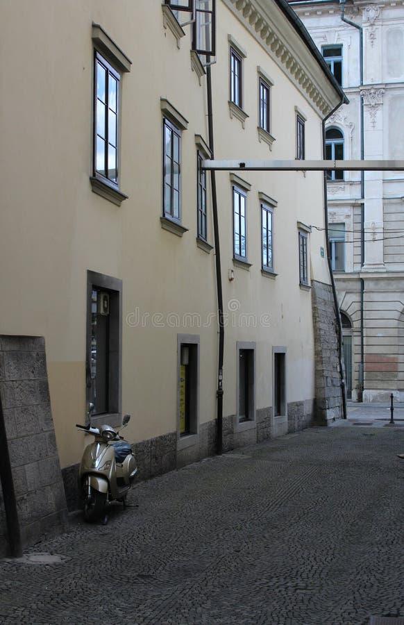 Miasto Ljubljana obraz stock