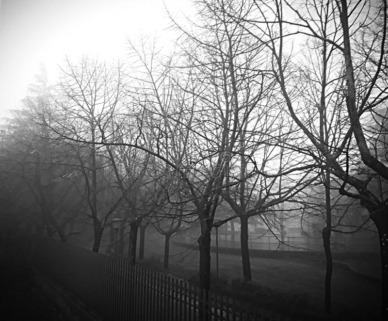 Miasto mgła obraz stock