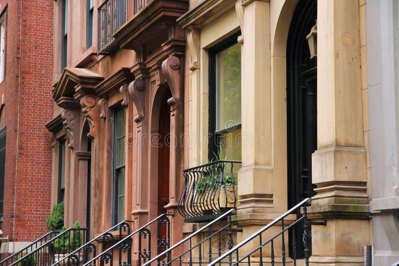 Miasto Nowy Jork - żółw zatoka fotografia royalty free