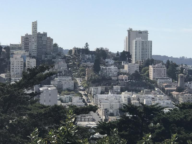 miasto San Francisco g??bik zdjęcie royalty free