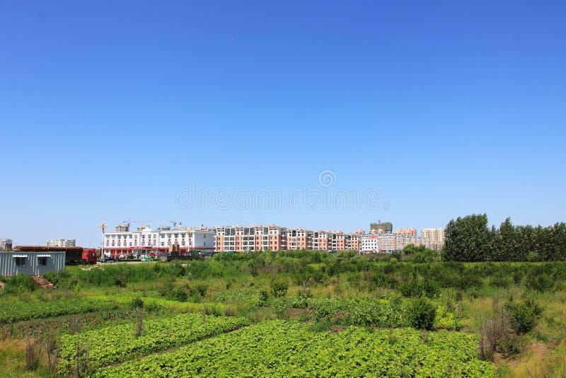 Miastowy ziemia uprawna krajobraz obraz royalty free