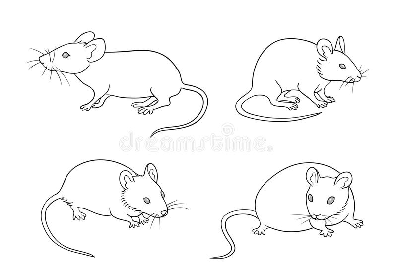 Mice in contours - vector illustration vector illustration
