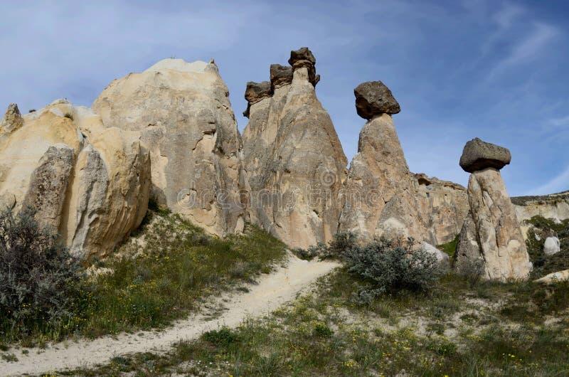 Michaelita dolinny Pashabag, grzybiaste powulkaniczne skały, Cappadocia obrazy royalty free