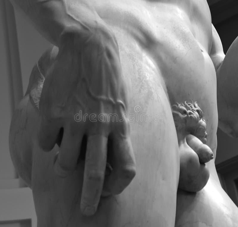 Michelangelo ` s David royaltyfria bilder