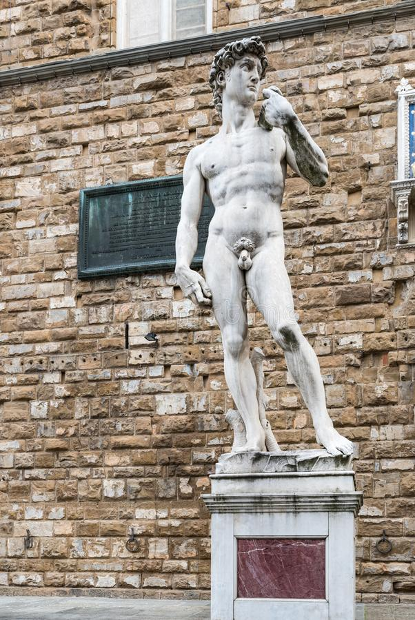Michelangelo ` s David in Florence royalty-vrije stock afbeeldingen