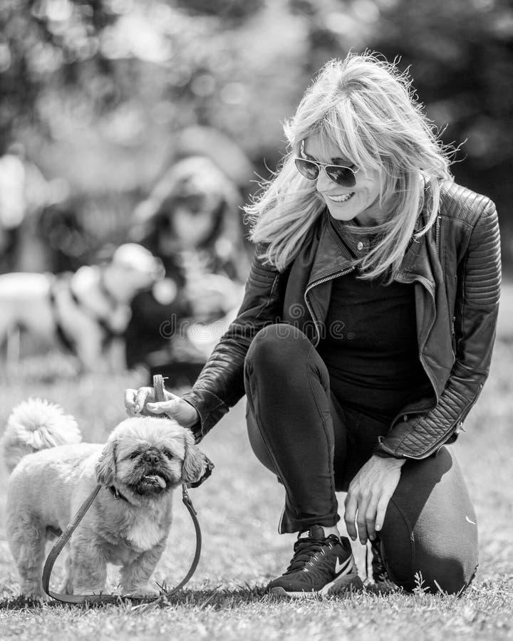 Michelle Collins som är klar att bedöma en hundshow på den Hampstead heden i London med hennes hund Humphrey royaltyfri fotografi
