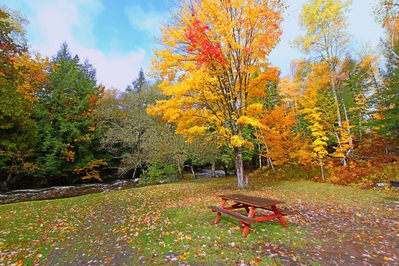 Michigan Upper Peninsula Picnic Area royalty free stock photo