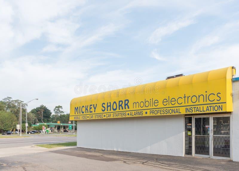 Mickey Shorr Car Stereo, Woodward Dream Cruise, MI royalty free stock image