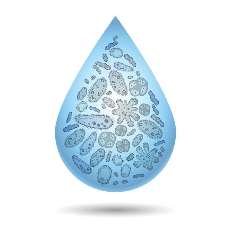 Micróbios, bactérias e vírus na gota da água suja, infecção ilustração royalty free