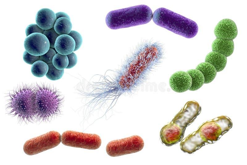 Micróbios de formas diferentes ilustração royalty free