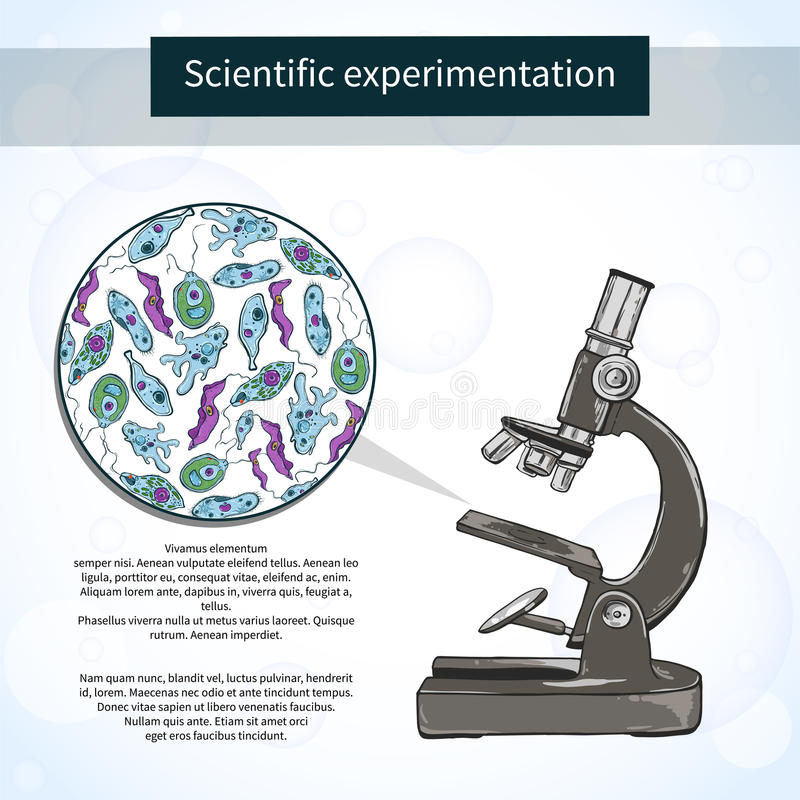 Micro-organismes sous le microscope Laboratoire scientifique illustration stock
