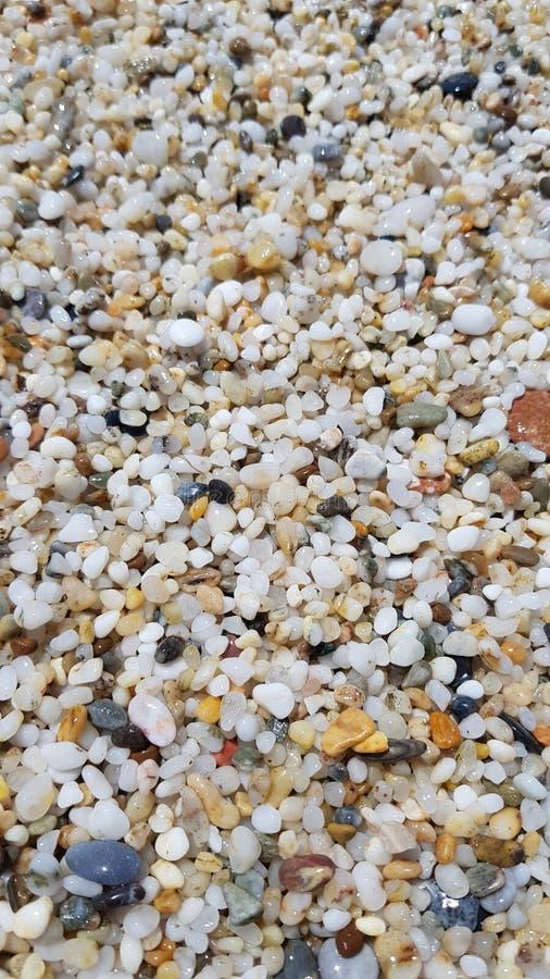 Micro pietre sulla spiaggia fotografia stock libera da diritti