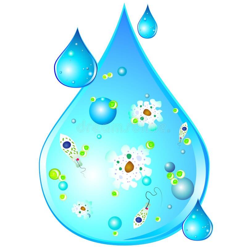 Microben in daling van vuil water royalty-vrije illustratie