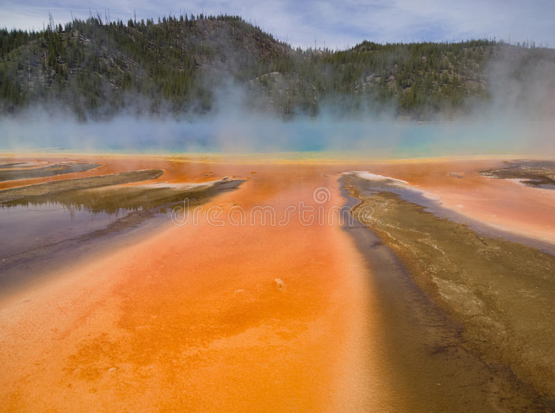 Microbial Orange. Summer run off from the Grand Prismatic Spring in Yellowstone National Park, the largest hot spring in the USA. The colors of the microbial royalty free stock photos