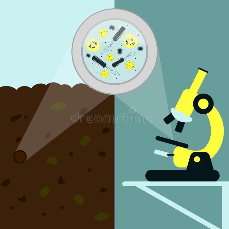Microbiologie de sol illustration libre de droits
