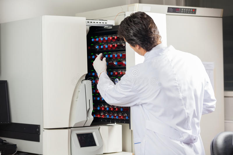 Microbiologist Placing Bottles Into Blood Culture royalty free stock image