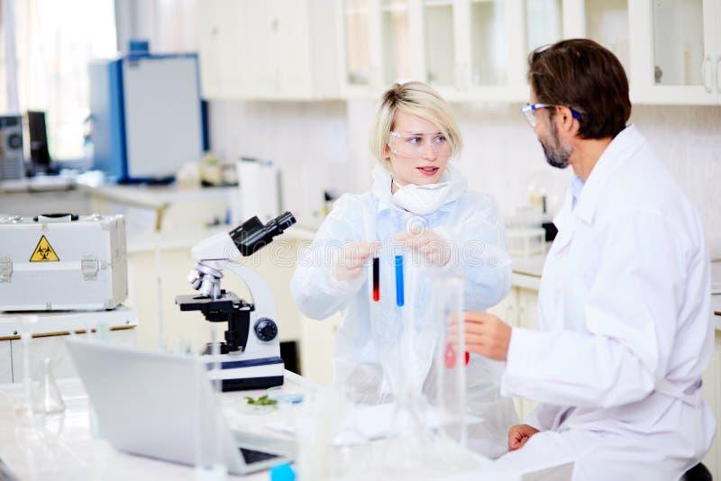 Microbiologistes doués ayant la discussion photographie stock
