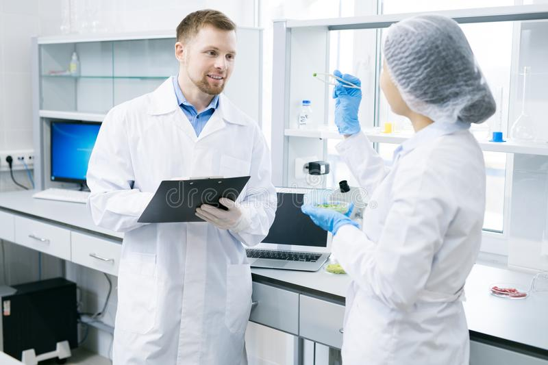 Microbiologists discussing vegetable sample in laboratory stock images