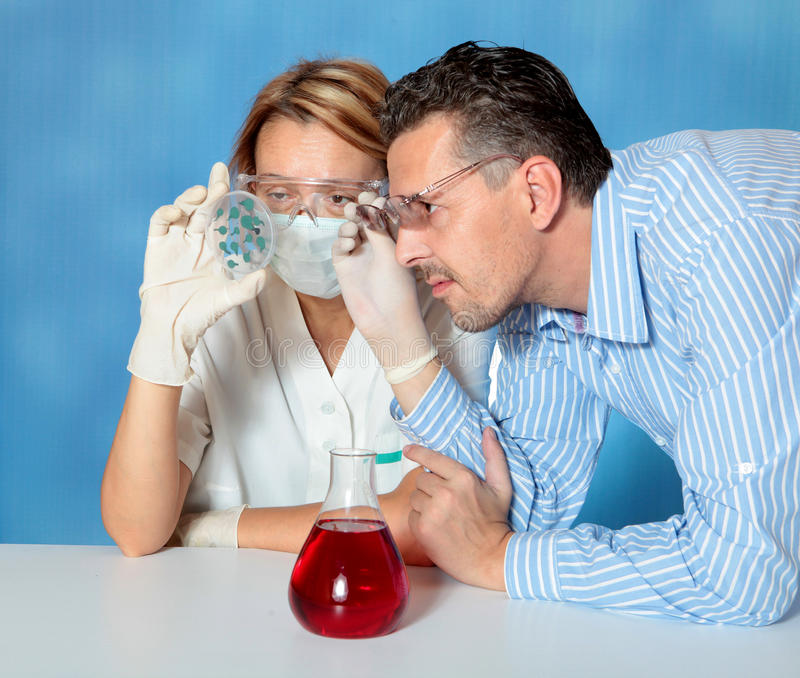 Download Microbiology stock image. Image of analyzing, bacterium - 11310823