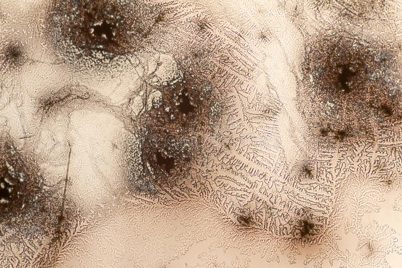 Microcrystal structures in dried dyestuff. Microscopic shot showing some microcrystal patterns in dried dyestuff stock image