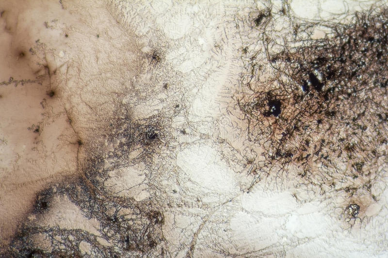 Microcrystal structures in dried dyestuff. Microscopic shot showing some microcrystal patterns in dried dyestuff royalty free stock images