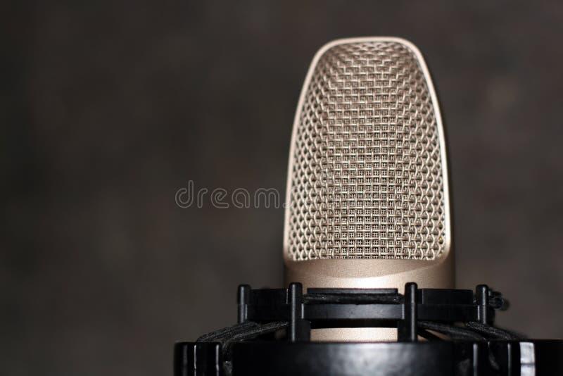 Microfone de condensador do estúdio imagens de stock