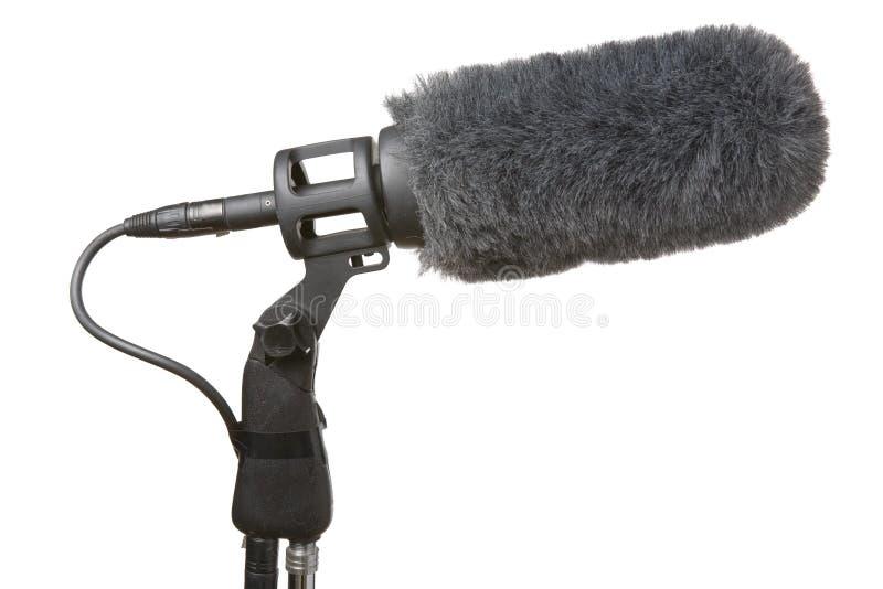 Microfone e pára-brisa fotografia de stock royalty free
