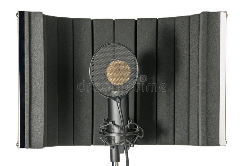Microfone e protetor do estúdio no suporte do mic fotos de stock royalty free